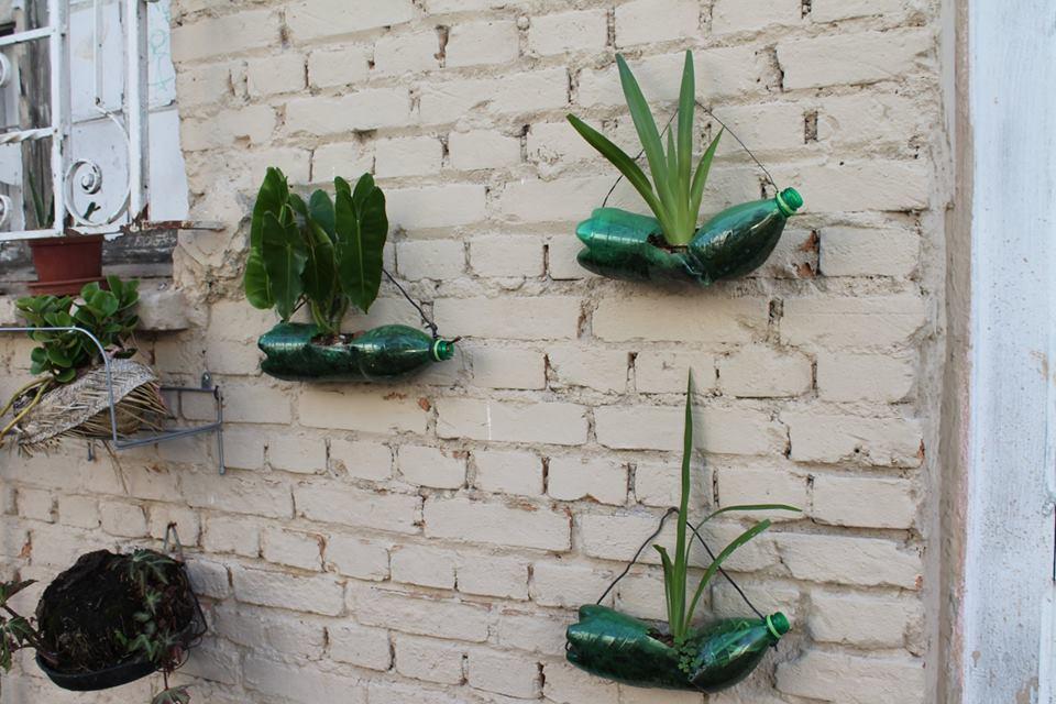 Além de cultivar plantas, esta casa no bairro da Mooca também utiliza garrafas pet no lugar de vasos. As pessoas estão mais preocupadas com sustentabilidade? Até que ponto você se preocupa com o tema?