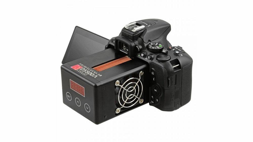 new-cam.jpg