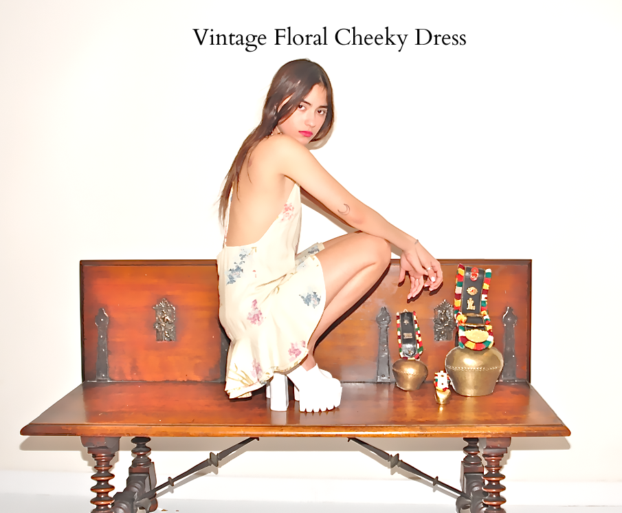 Vintage Floral Cheeky Dress