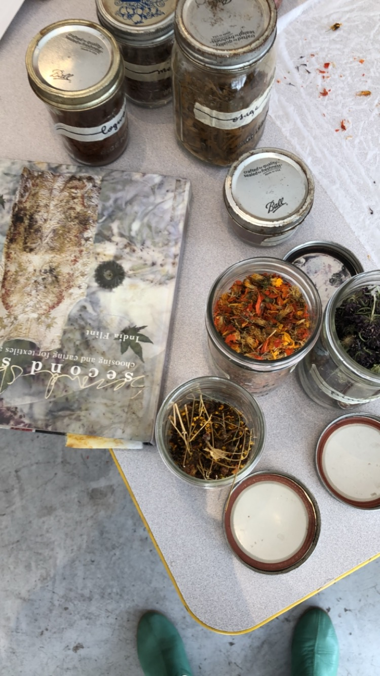 Bird's Eye View - jars full of dried plants for dyeing, and a natural dyeing book by India Flint
