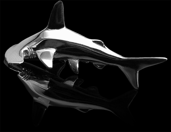 HammerShark_BlackGlass_B5.png