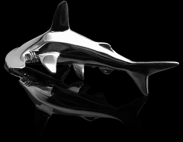 HammerShark_BlackGlass_B5.png
