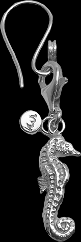 Earrings_w_Seahorse_H4_no_shaddow.png