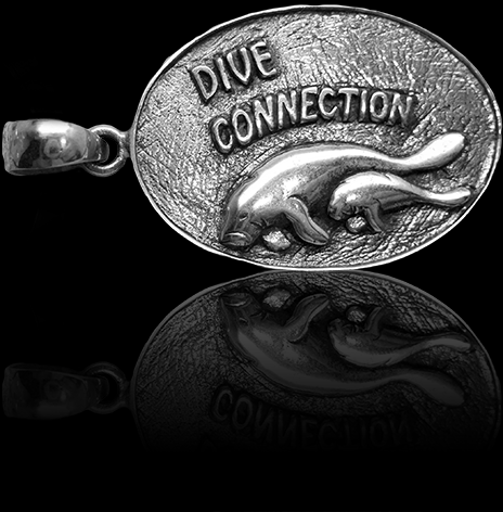 DiveConnection_wo_ring_H4.png