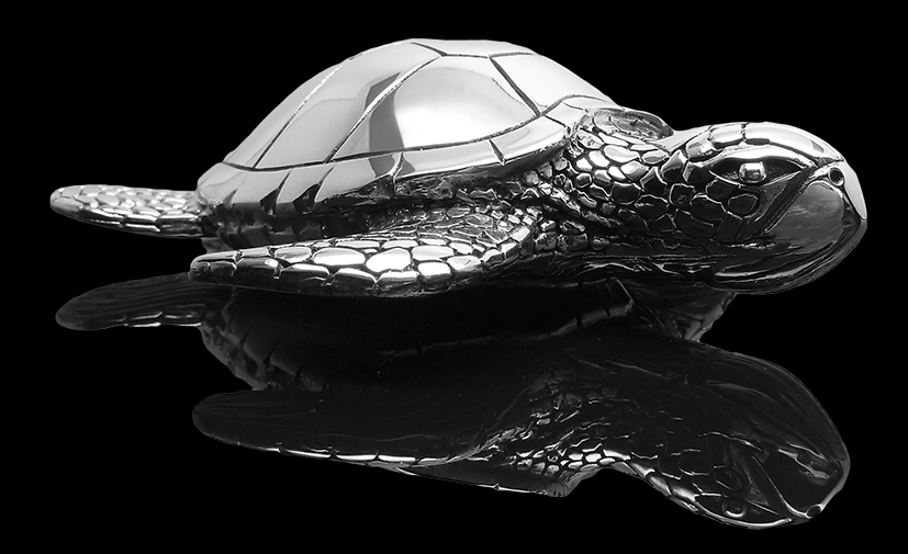 Turtle_big_front_right_I.png