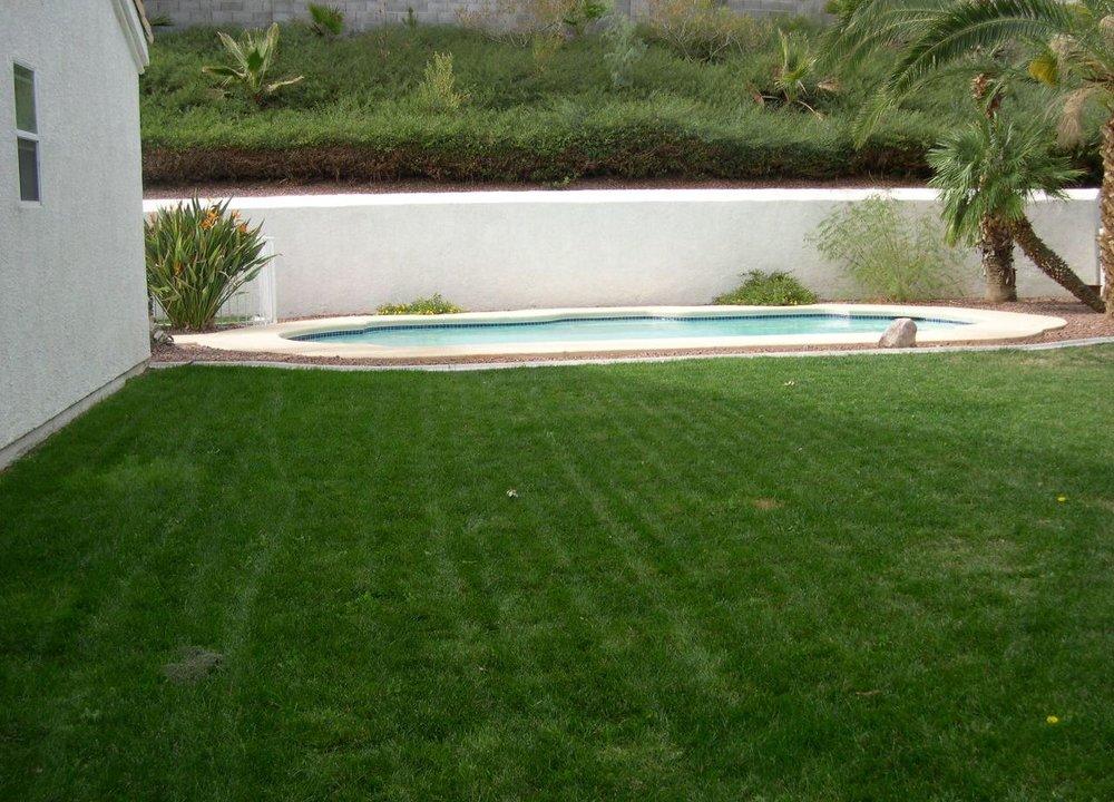 yard and pool 1 best.jpg