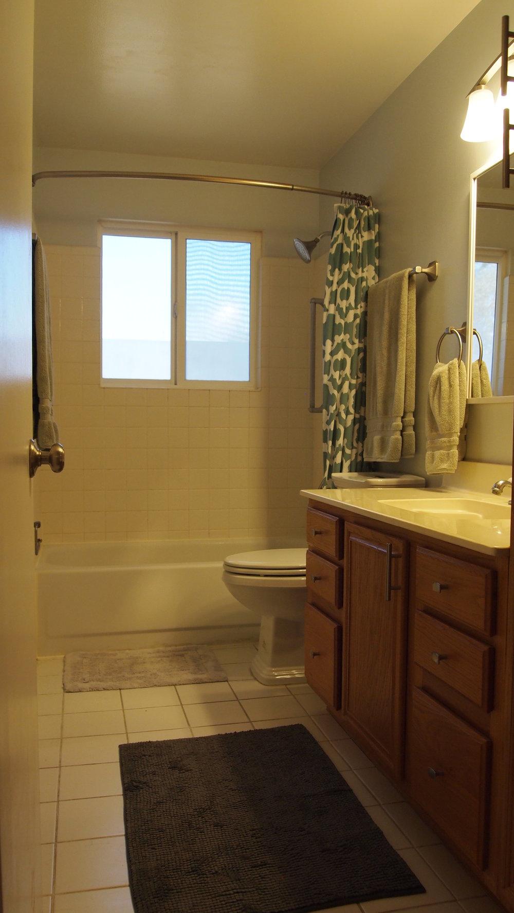3115 Paradise DS Bath.JPG