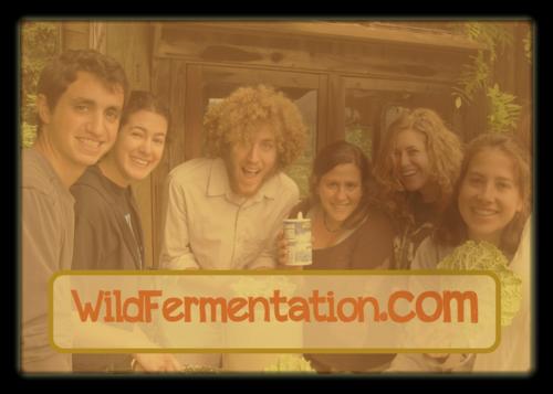 Check out Sandor Katz's website for loads offermentation related info.