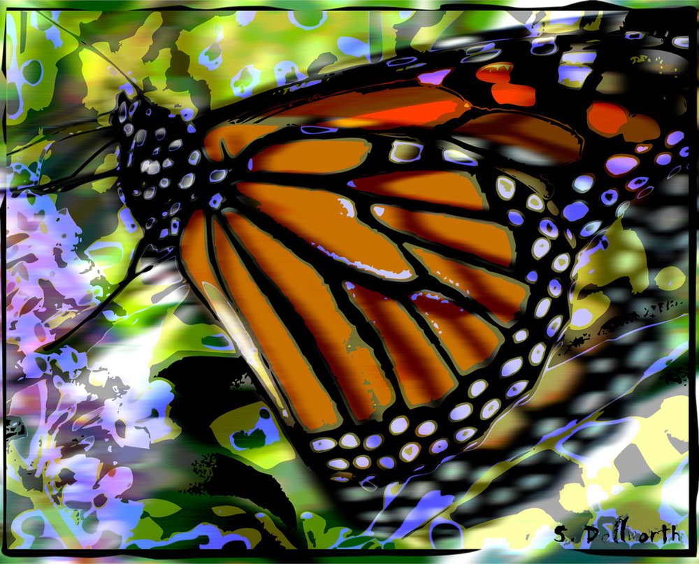 Beautiful butterfly artwork created exclusively for the capemayX article by famed artist S. Dellworth.