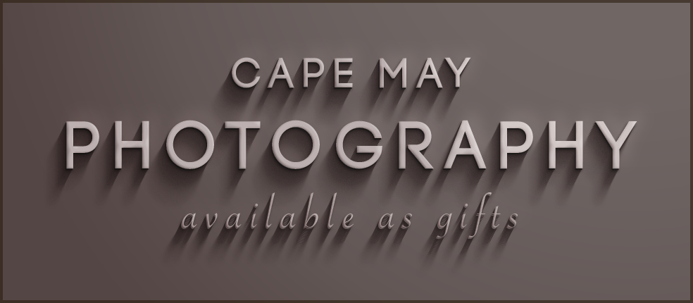 LH-cape-may-photography-store-graphic.png