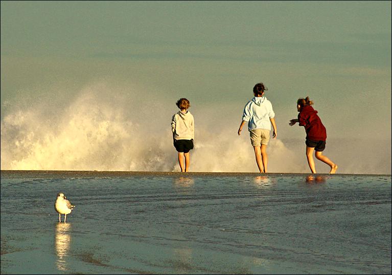 beach-benefits-series-thin-border2.png