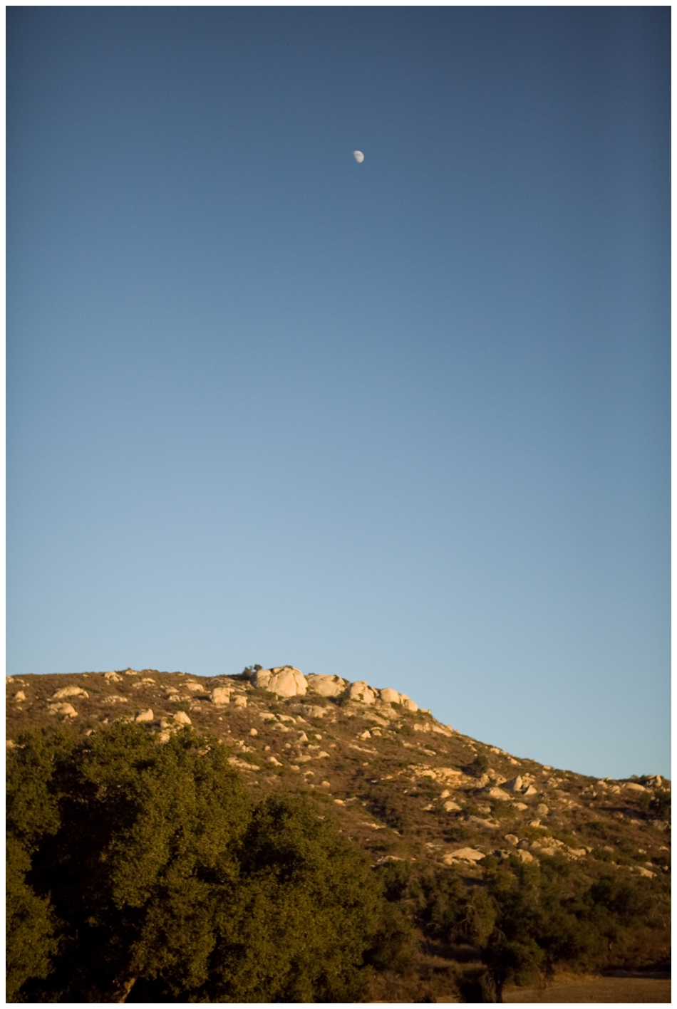 sandiegophotography-39.jpg