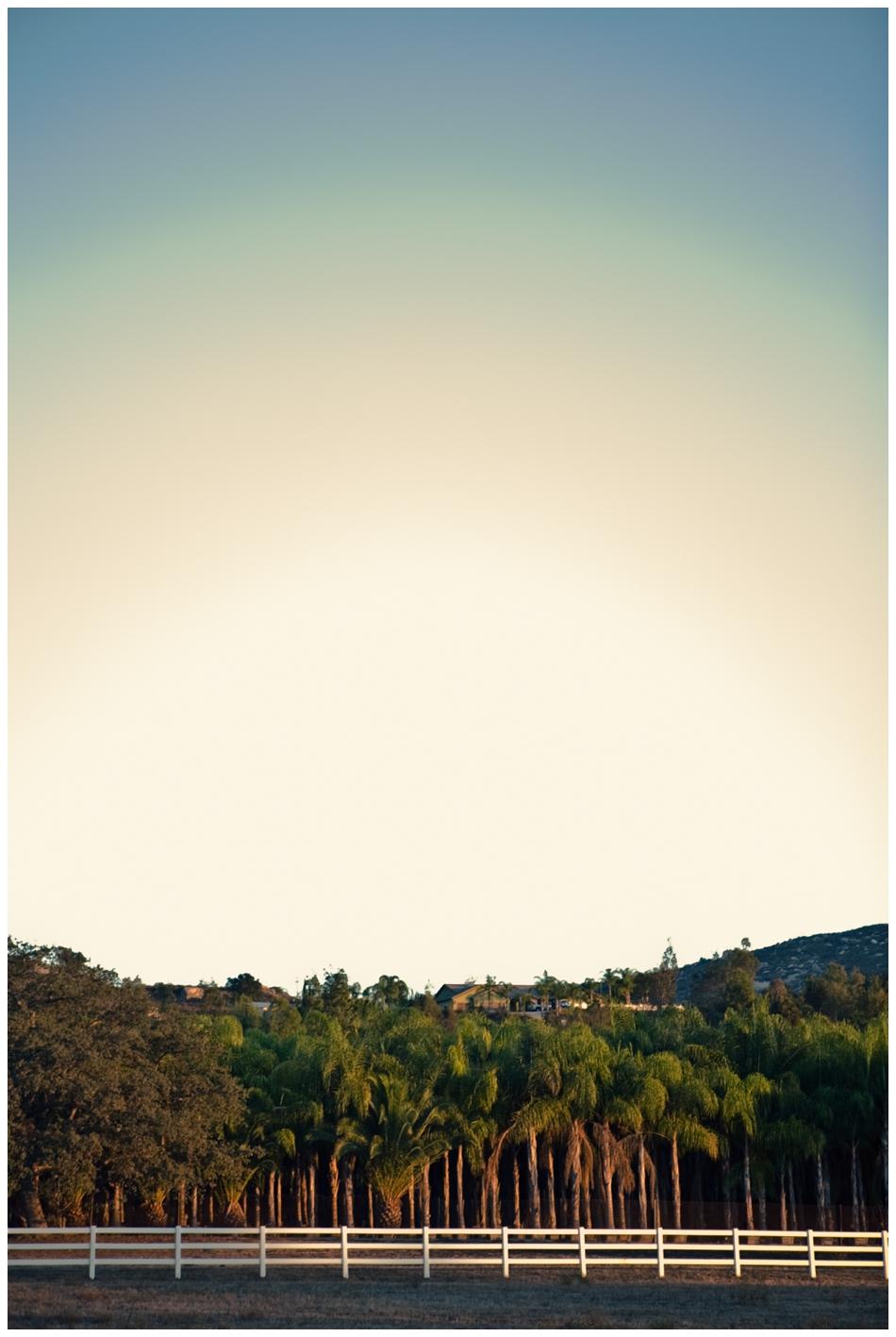 sandiegophotography-56.jpg