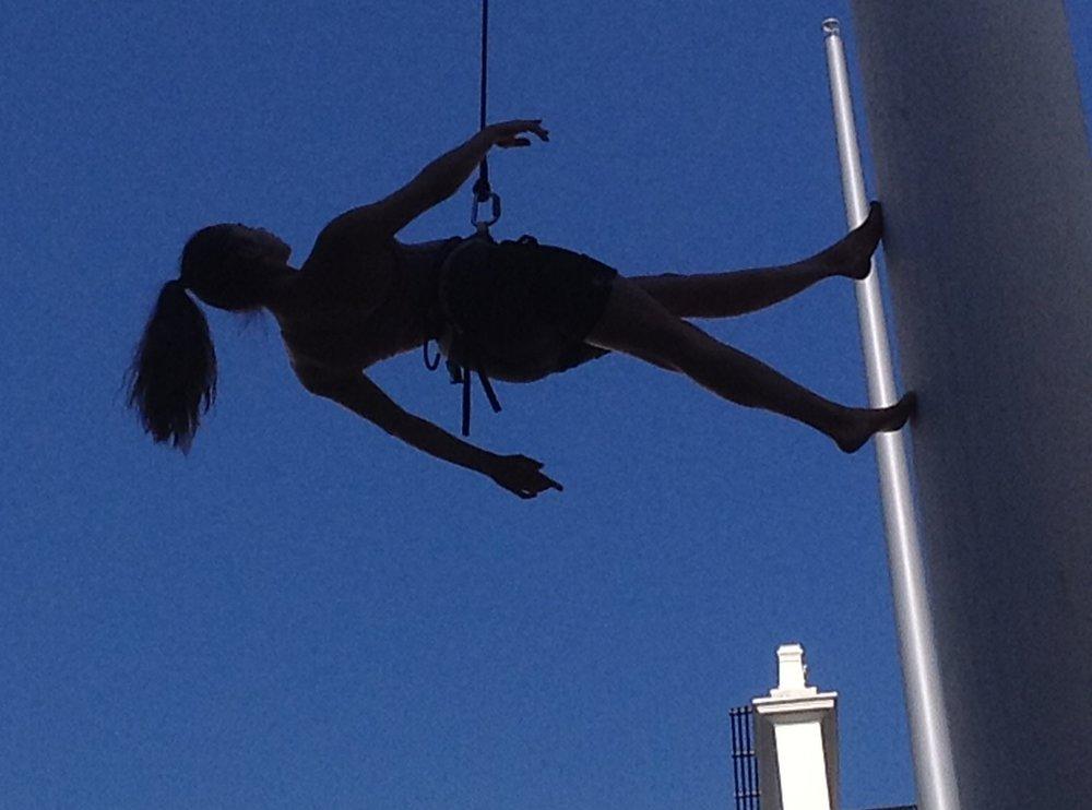 Leyla Rees harness