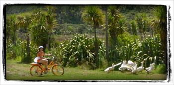 Batt-on-Bike.jpg