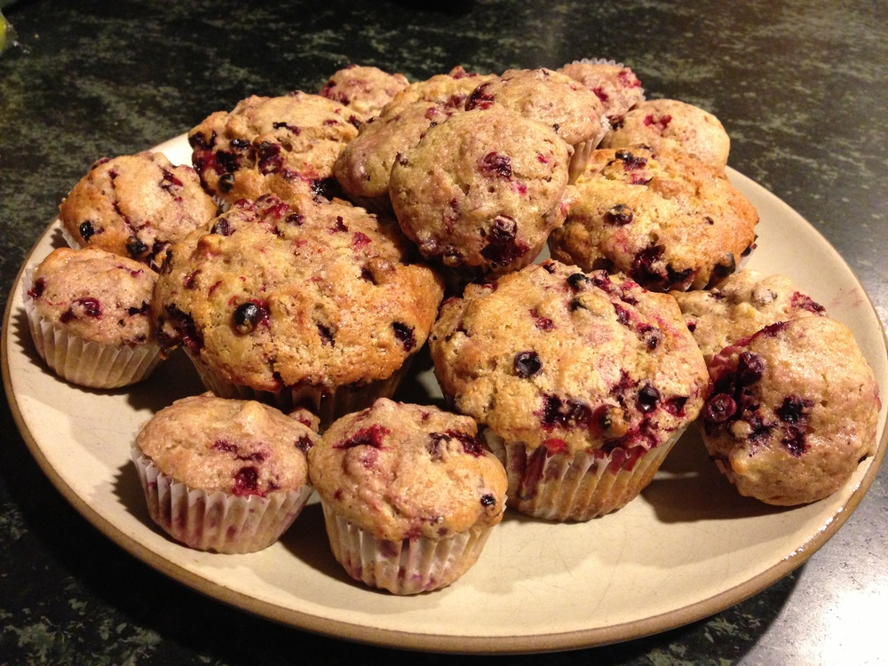 Wild Alaskan Lingonberry Muffins