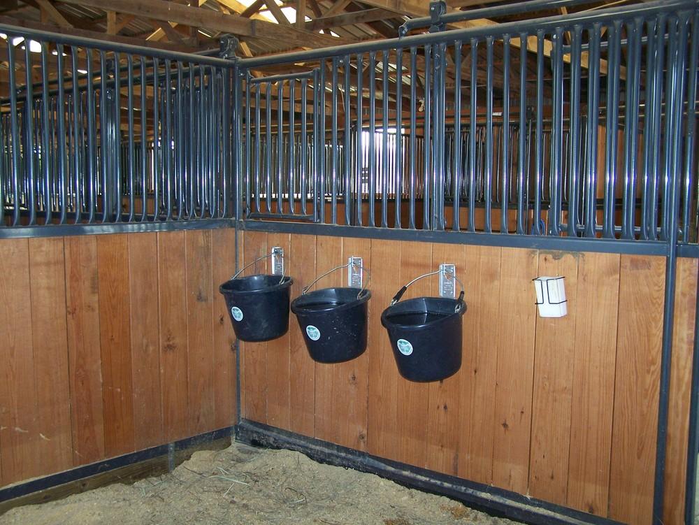 4-Stall.jpg