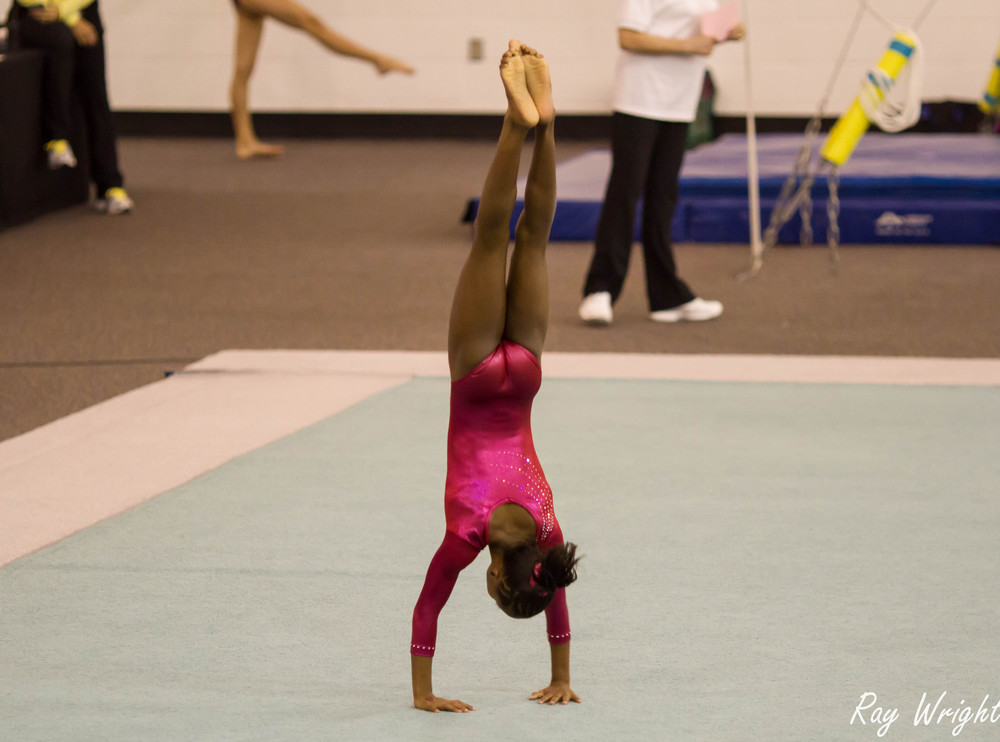 Judges Gymnastic Meet 169.jpg