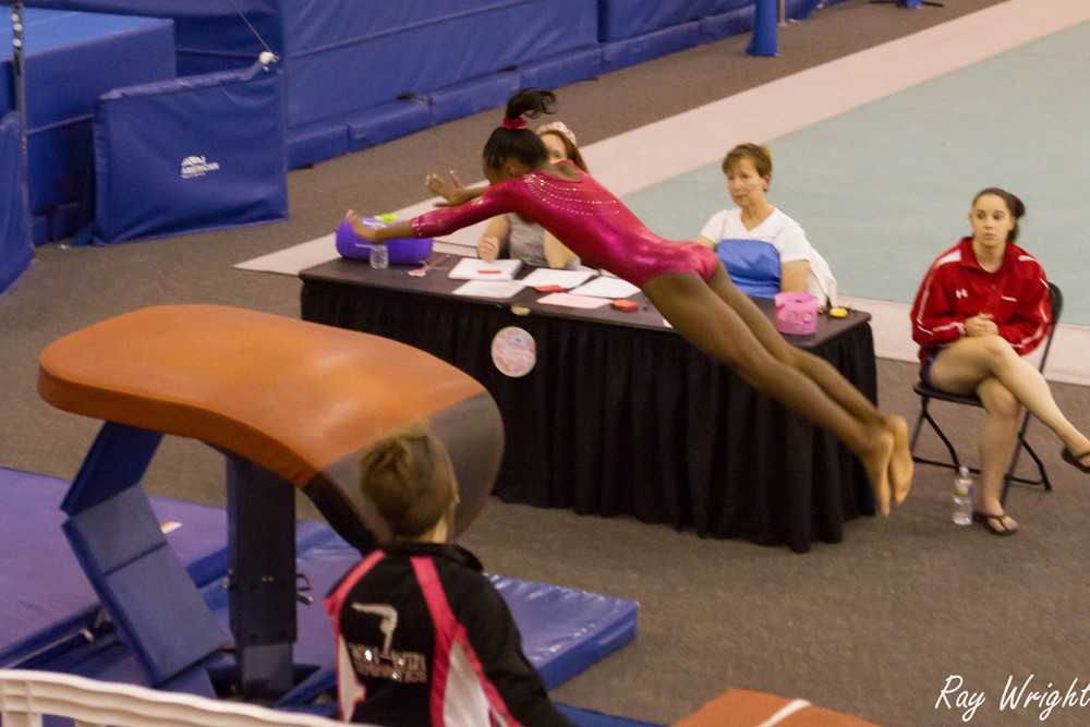 Judges Gymnastic Meet 315.jpg
