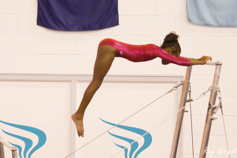 Judges Gymnastic Meet 459.jpg