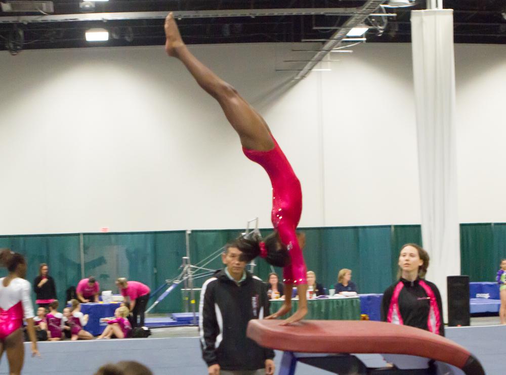 Gymnastic Meet Fredricksburg Va 324.jpg