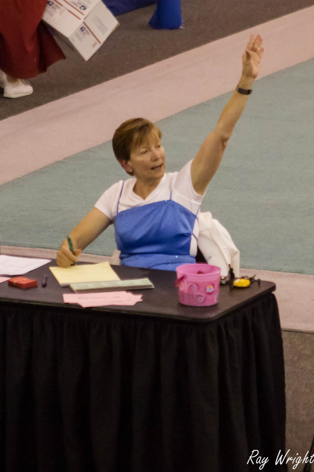 Judges Gymnastic Meet 283.jpg