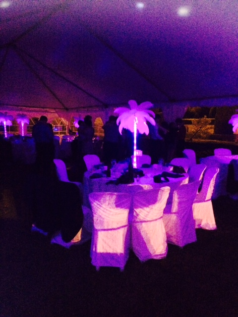 Parkwood reception palm tree decor wedding dj.jpg
