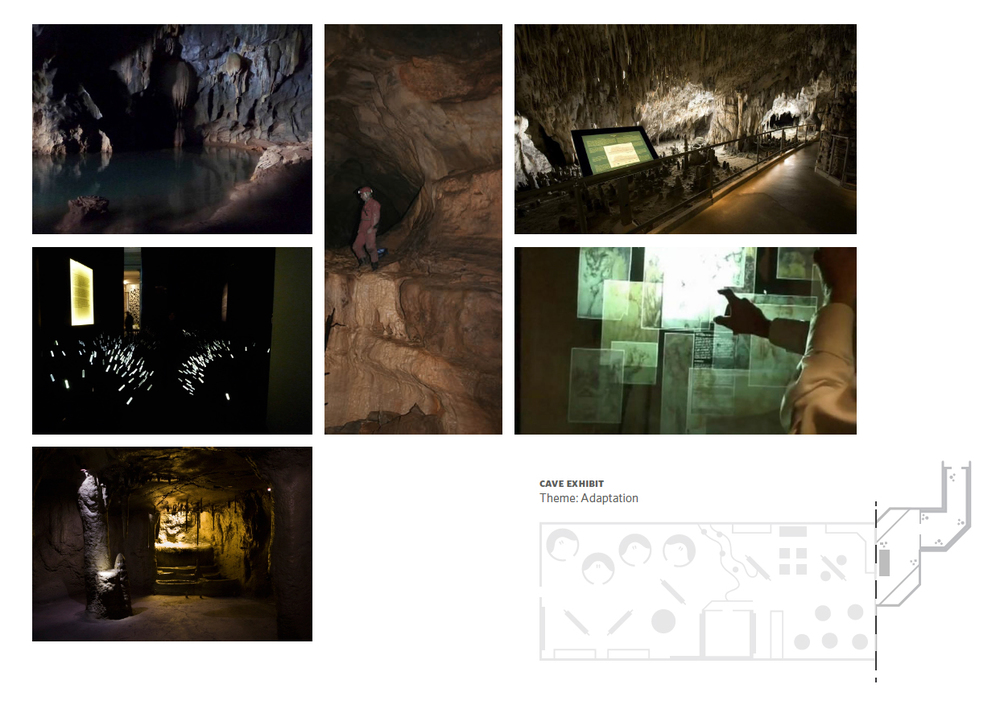 cave_process.jpg