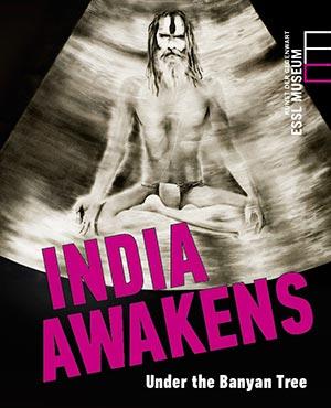 IndiaAwakensEINBAND.jpg