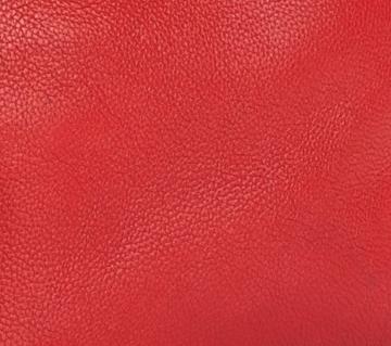 Céline Drummed Calfskin Leather