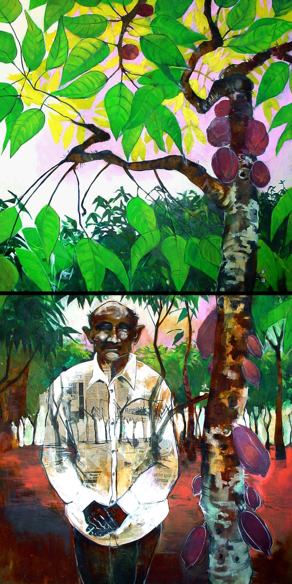 Old Cocoa Farmer
