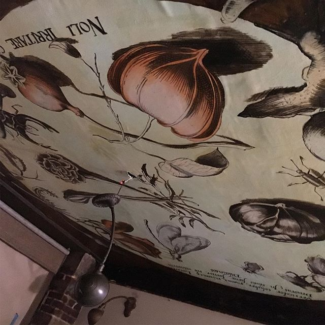 """This was a 2 year plan to get the bar ceiling """"botanified"""". That along with other improvements will get us ready for Spring. Now we hang the 30' monster of a mural - all hands on deck to defy gravity & bring on botany!"""