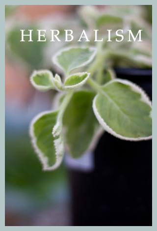 Sage-and-Spirit-Herbalism2.jpg