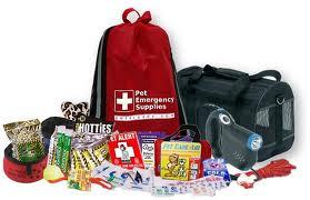 Pet emergency kit.jpg
