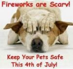 July 4 safety - dog under bed.jpg