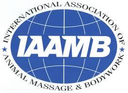 IAAMB logo.jpg
