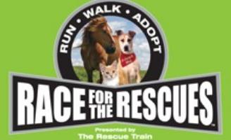 pet event, pet adoption