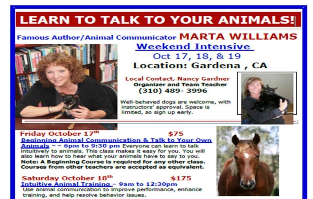 pet communication, animal massage, Reiki, dog therapy