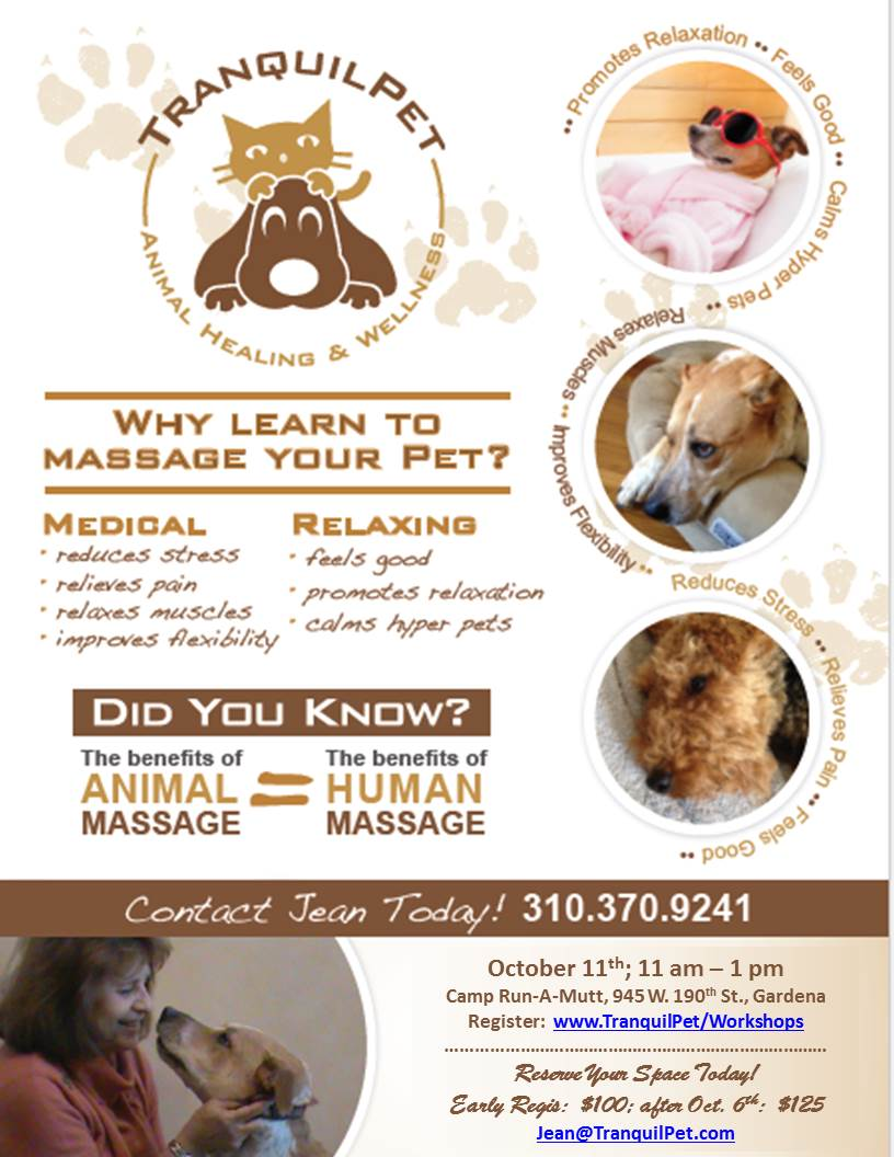 Learn to Massage Your Dog