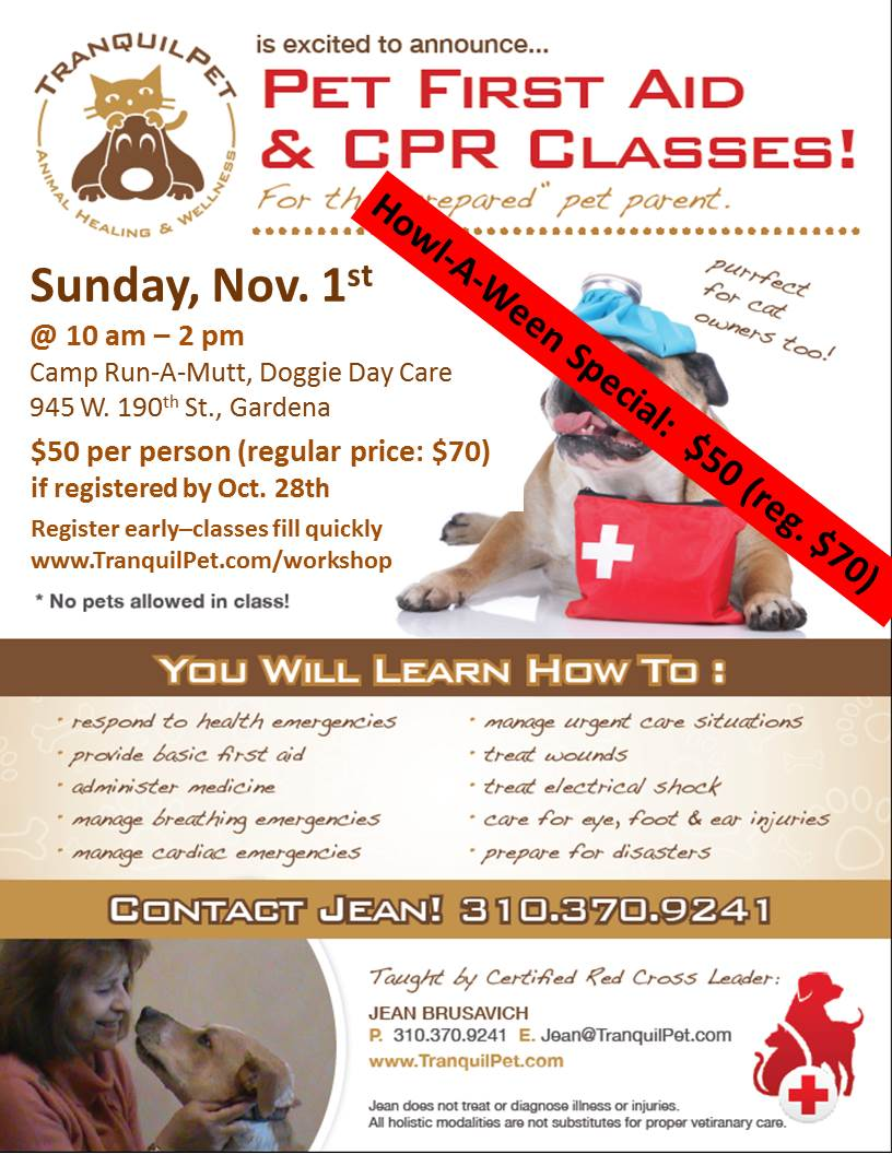 Pet First Aid & CPR Class, Red Cross Pet First Aid,