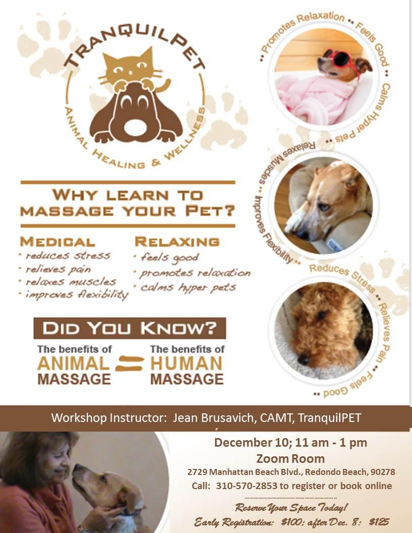 Animal Massage