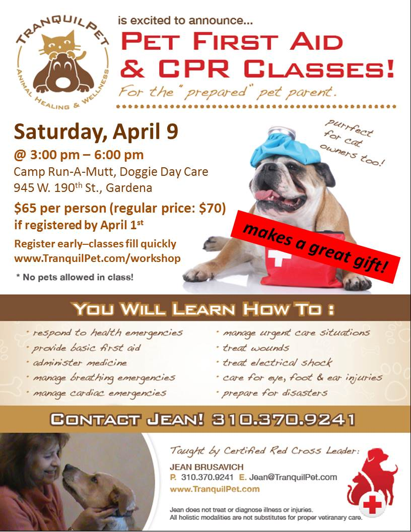 Pet First Aid & CPR Class, Red Cross Pet First Aid