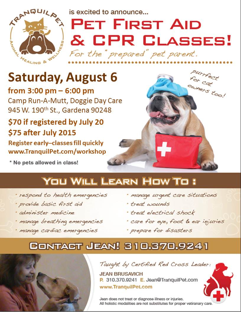 pet first aid class, pet first aid & cpr class