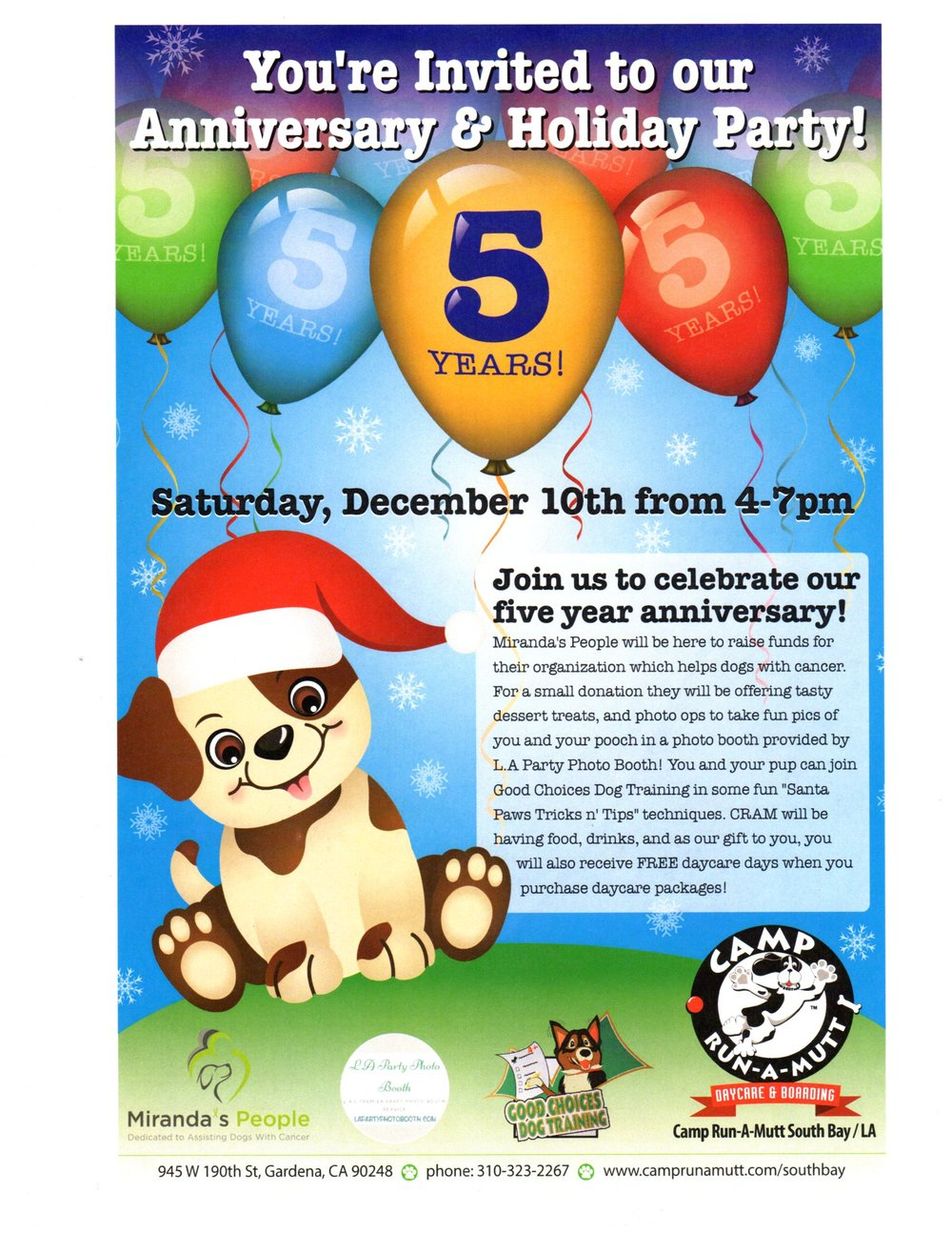 pet holiday party, canine swimming, animal massage, Reiki, dog injuries
