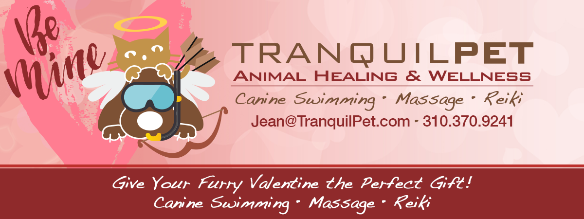 TranquilPET - Animal Healing & Wellness, Massage, Reiki & Canine Aquatics
