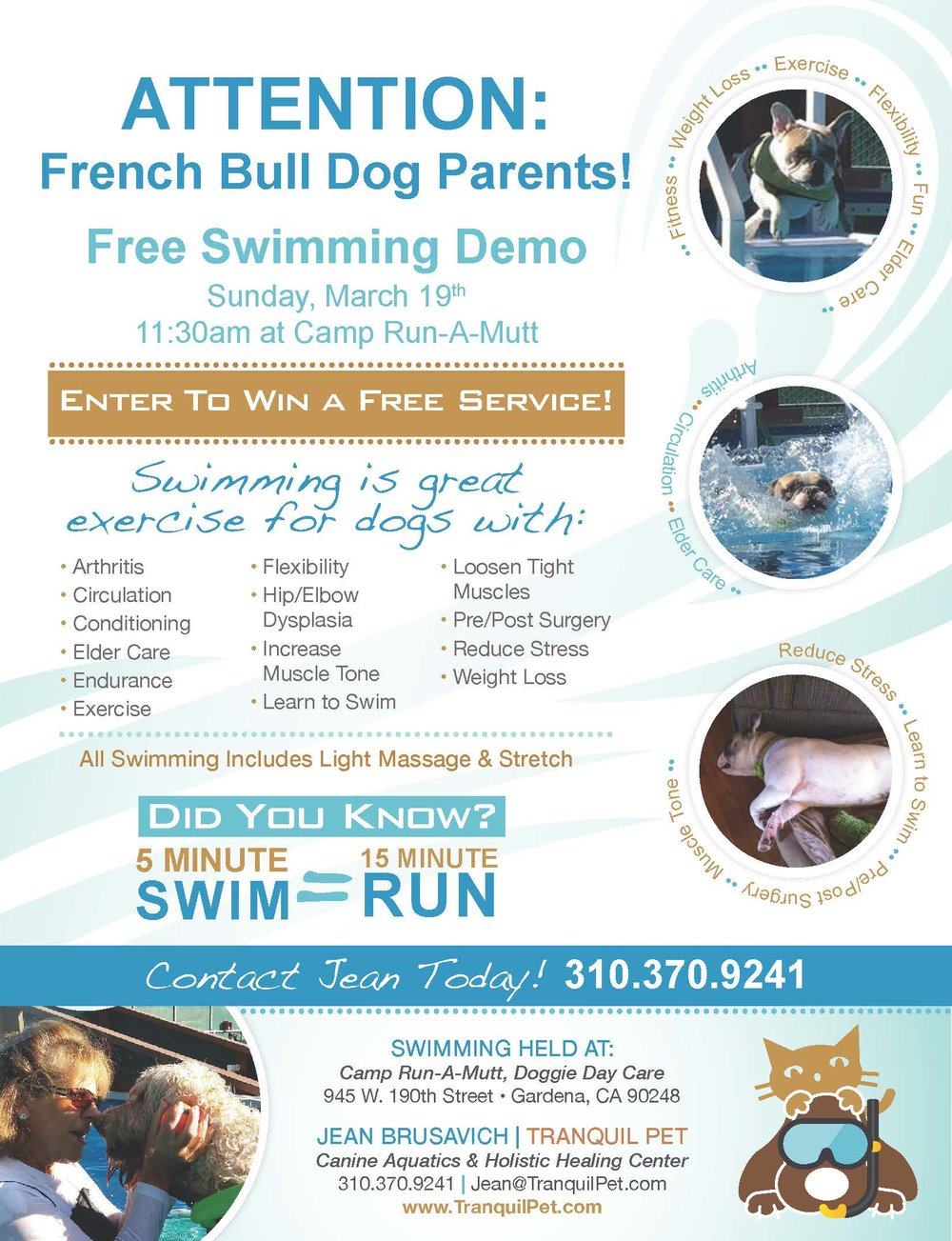 French Bull Dog, canine swimming, dog swiming, animal massage, Reiki