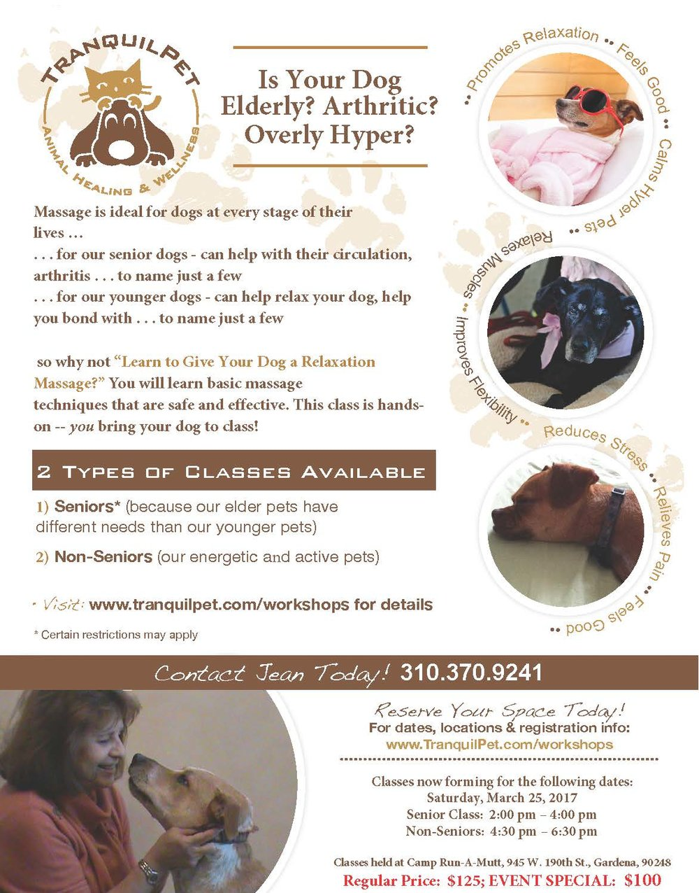 animal massage, dog massage, massage, dog swimming, Reiki for animals, animal Reiki