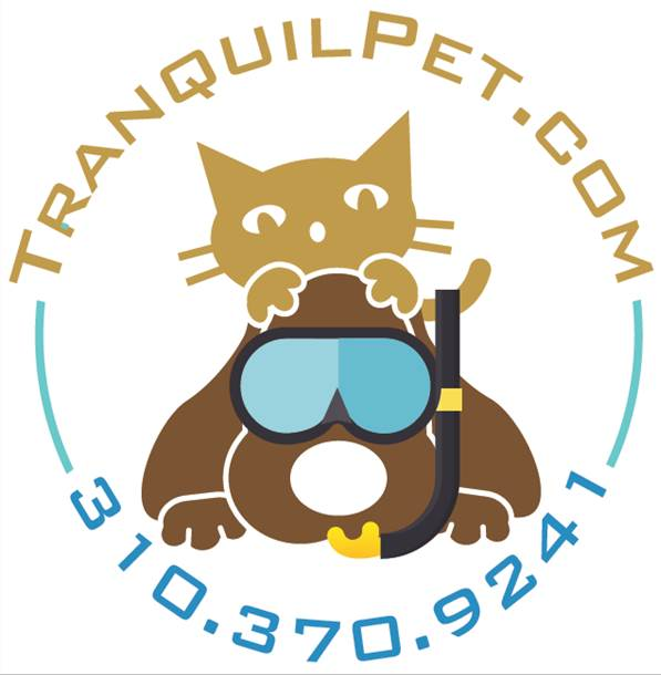 Tranquil Pet, Canine Aquatics & Holistic Healing Swim Demo Animal Massage Tips