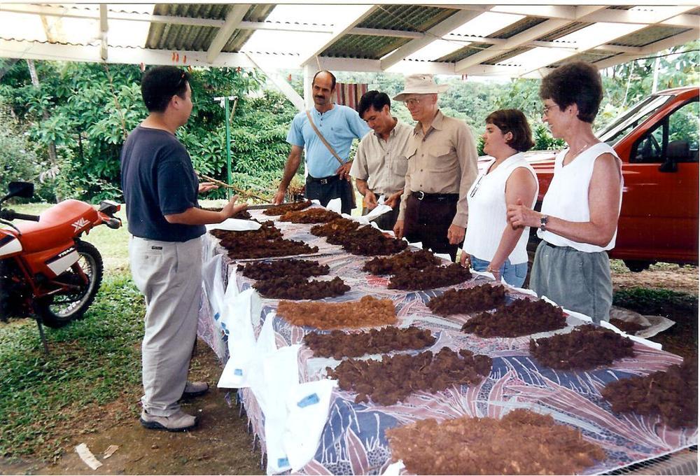 CarlosH w soils 001.jpg