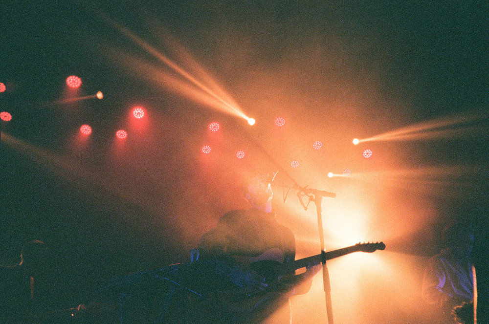 Fujifilm disposable Wild Nothing